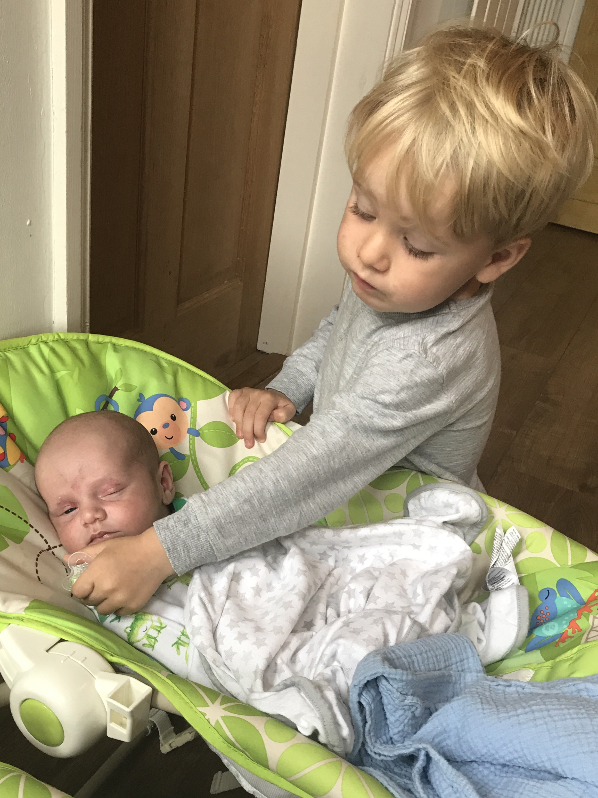 The *almost love/*almost hate relationship of a toddler and new twins