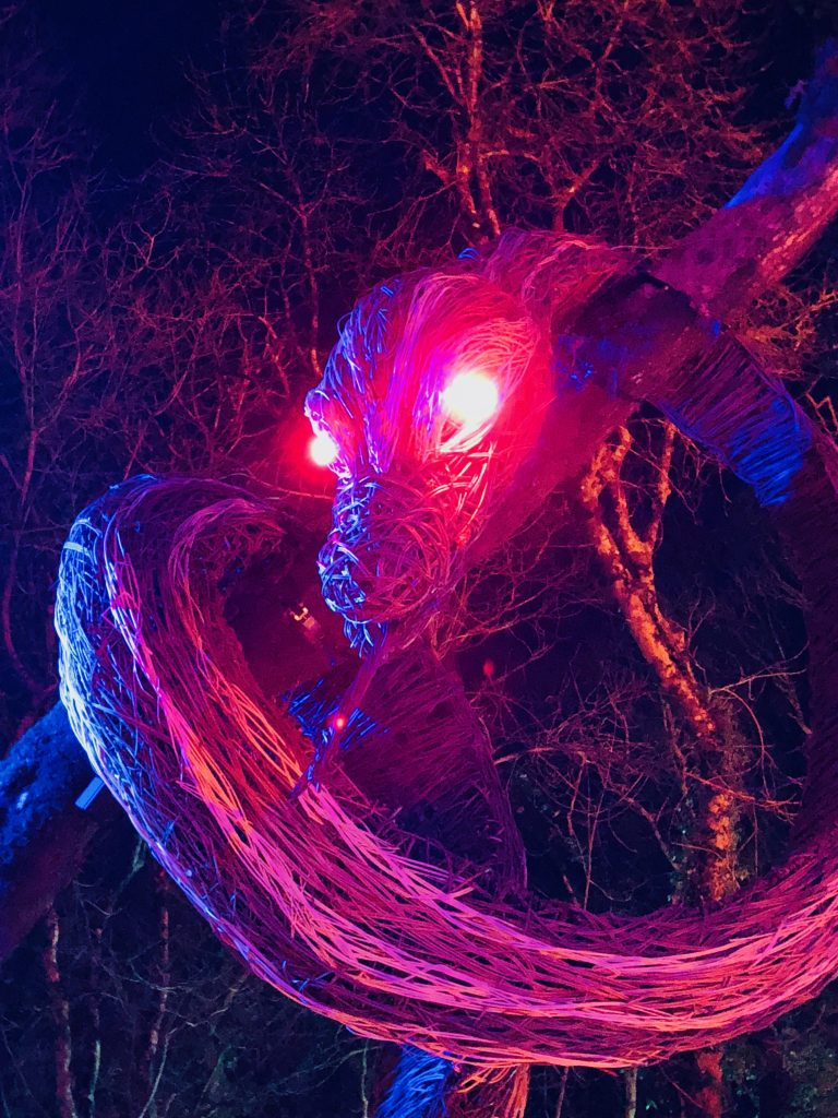Dragon at the Winter Lights Festival at Bluestone