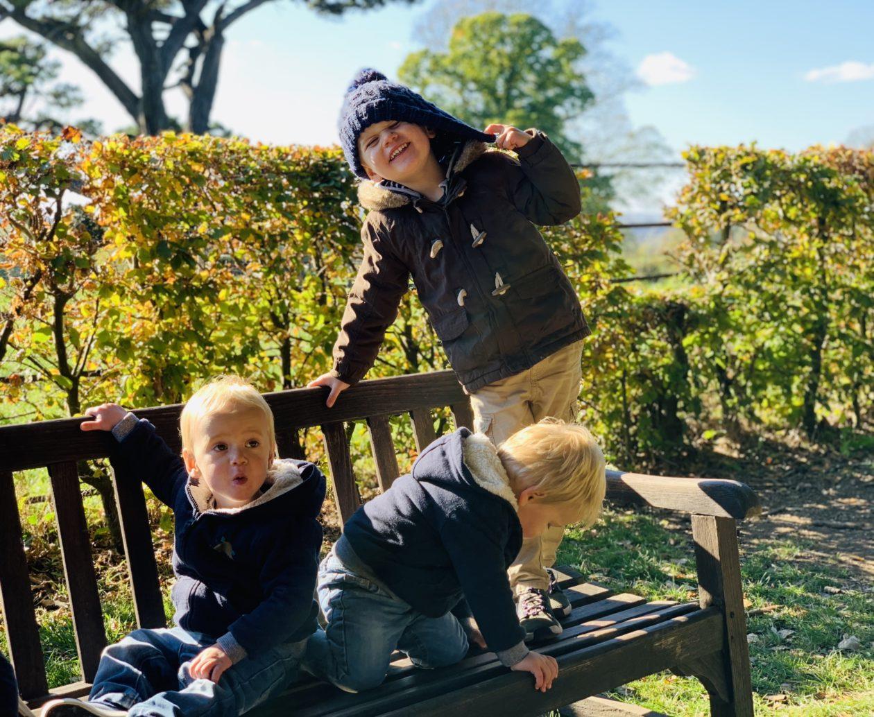 twins and preschooler at Saltram
