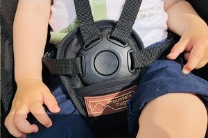 The stroller has a five point harness