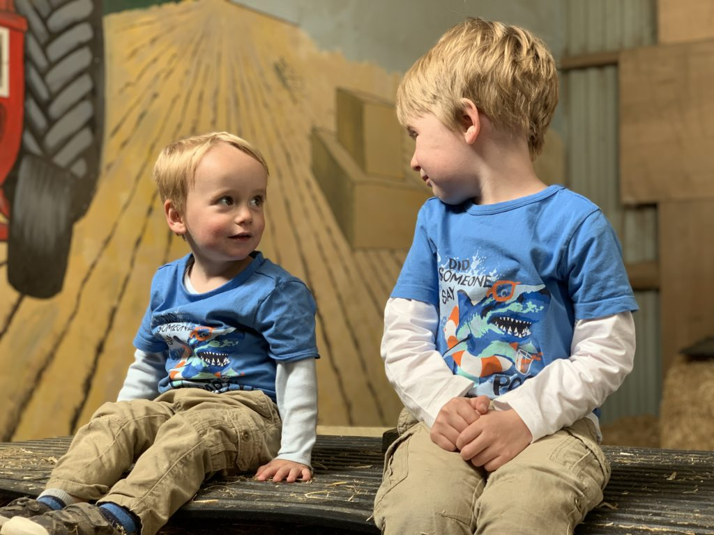 Brothers look at each other in the hay mountain at Farmer Palmer's Farm Park