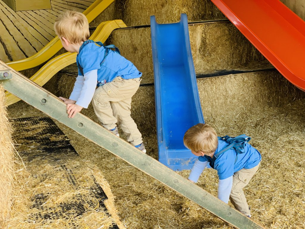 Twins climbing in the hay mountain