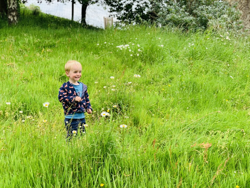Toddler playing in the grass