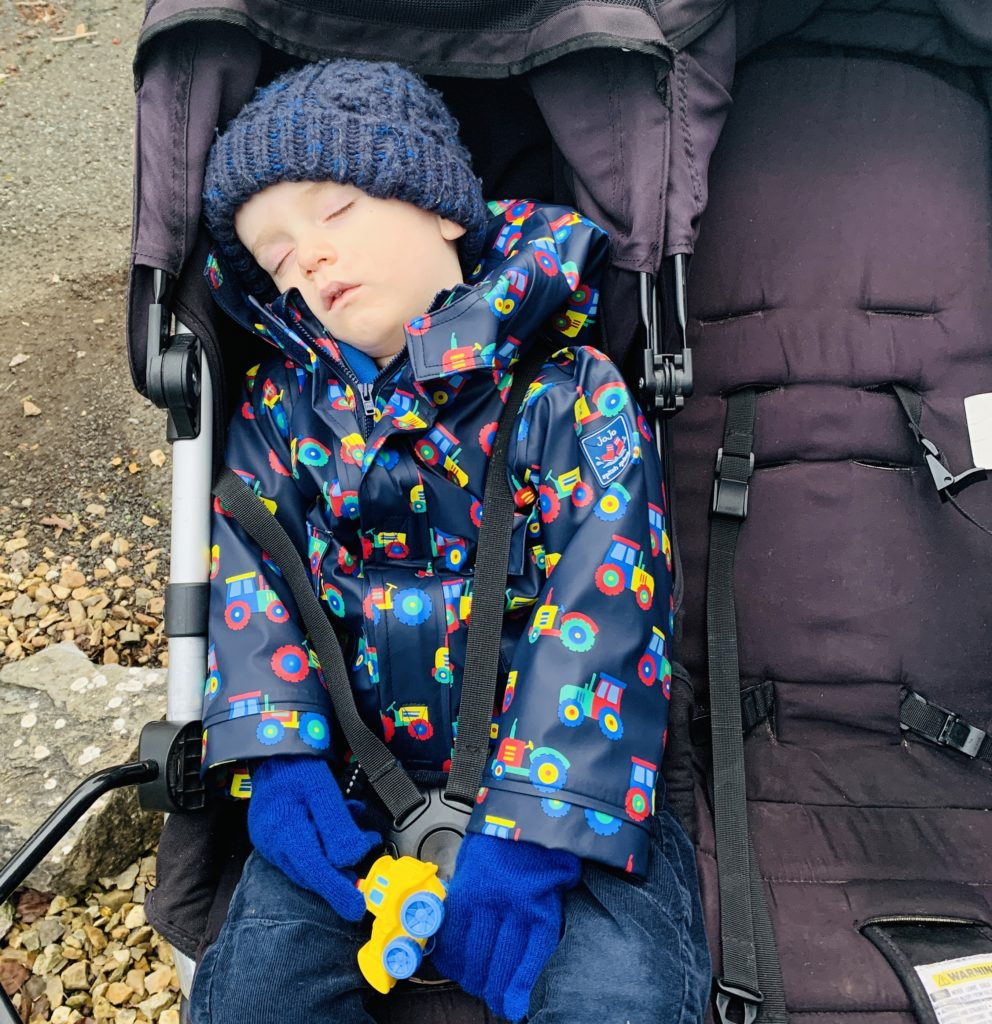 Toddler napping in the buggy