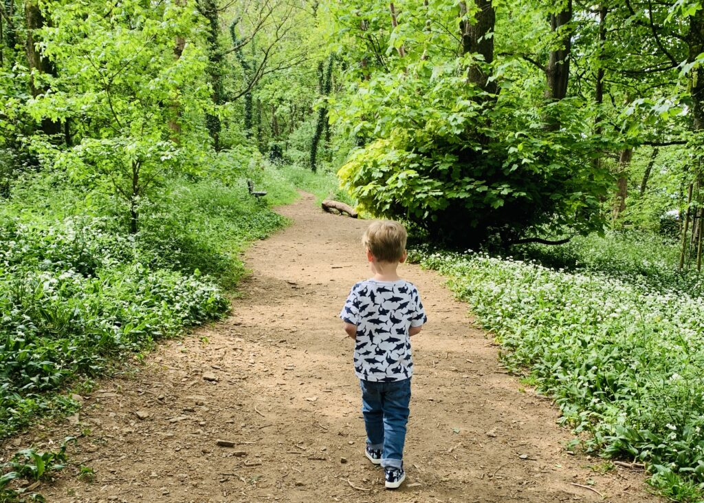 Toddler boy exploring Dunstone Woods