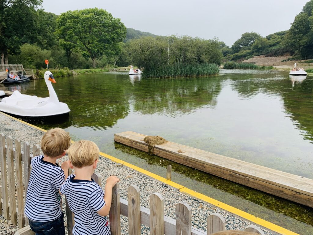 Twin three year old boys watch the swan pedalo boats at Lappa Valley