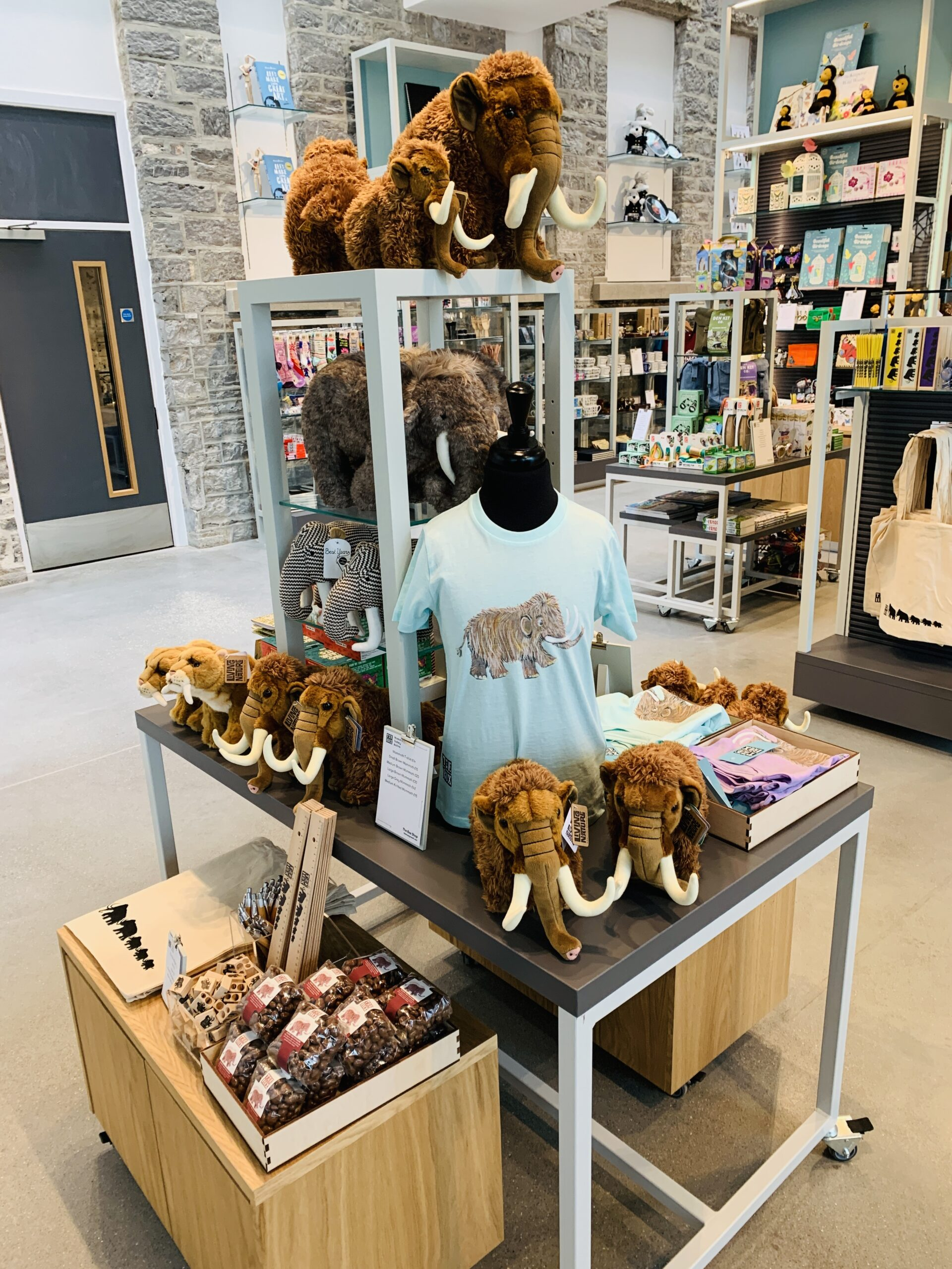 Woolly mammoth toys and clothing on sale in the gift shop at The Box museum in Plymouth
