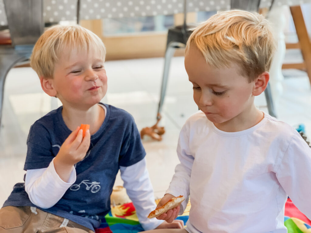 Three year old twin boys eat a picnic on the rug at home. Parents wondering whether they should be separating twins at school
