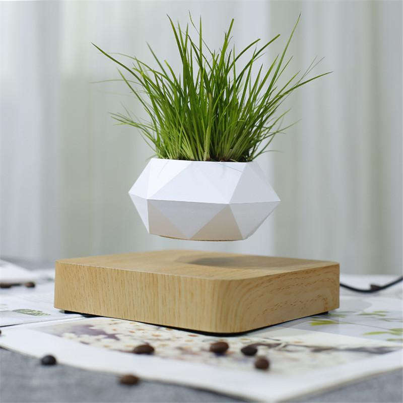 A white plant pot levitating over a wooden base with a green plant in it