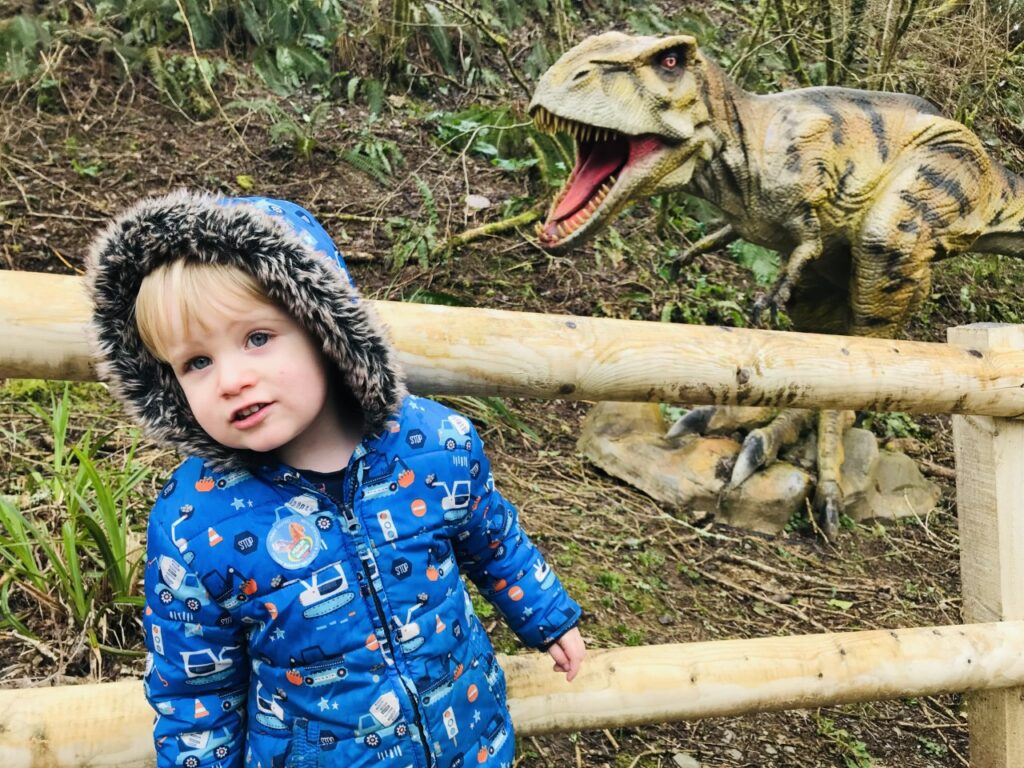 Two year old boy with a blue winter coat and a model dinosaur behind him