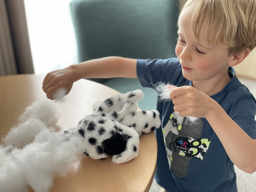 Little four year old boy is excited to see a cuddly toy build kit at a family friendly hotel in cornwall
