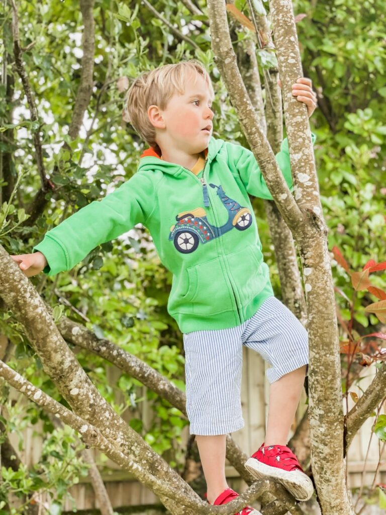 A three year old boy wearing a green hoodie climbs a tree in the garden