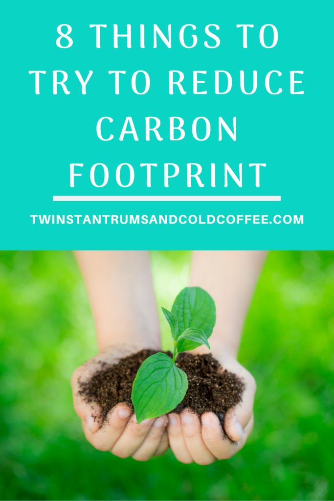 8 things to try to reduce carbon footprint