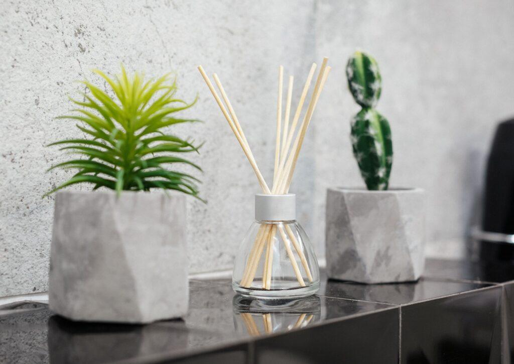 House plants on a shelf make a perfect housewarming gift