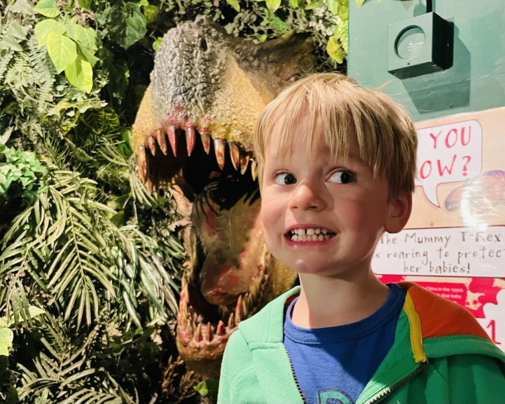 Four year old boy looks scared next to a t rex at a dinosaur museum near Plymouth