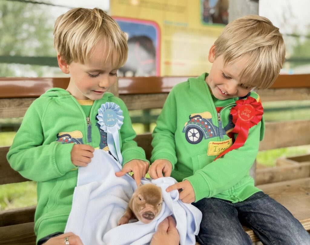 Twin four year old brothers cuddle a baby pic at Pennywell Farm