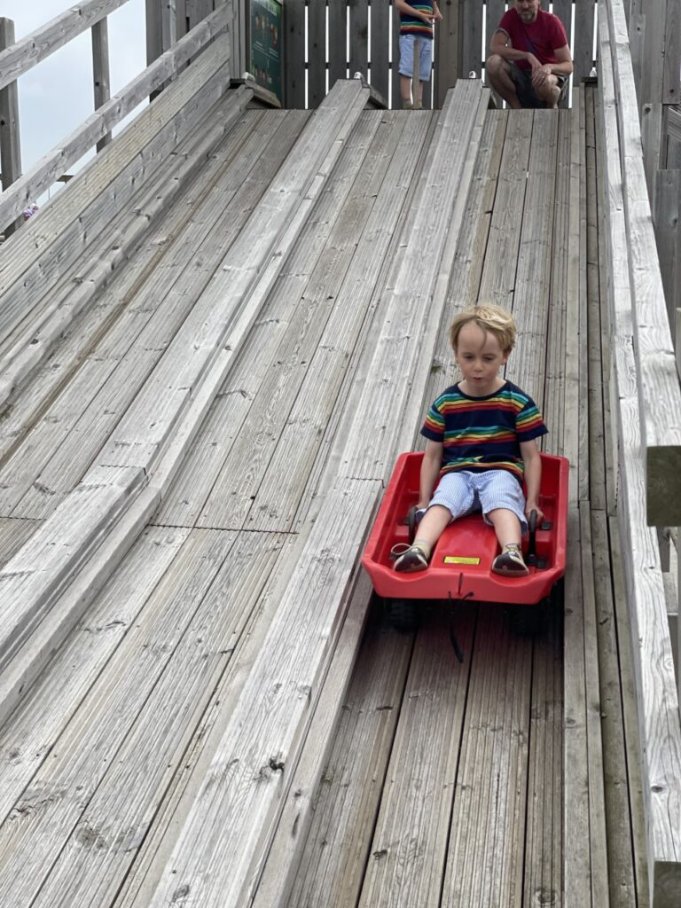 Four year old boy on a sledge slide