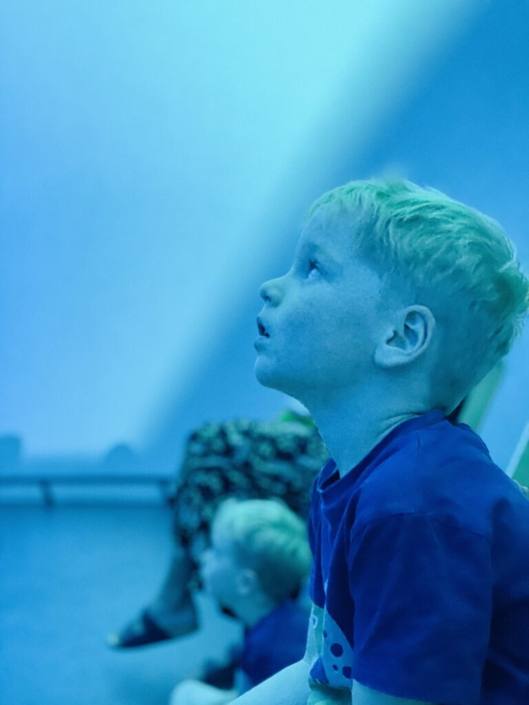 A four year old boy watching an immersive dome experience at Plymouth's Market Hall