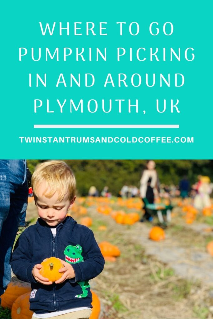Pin image of a small boy holding a pumpkin on a pumpkin patch near Plymouth